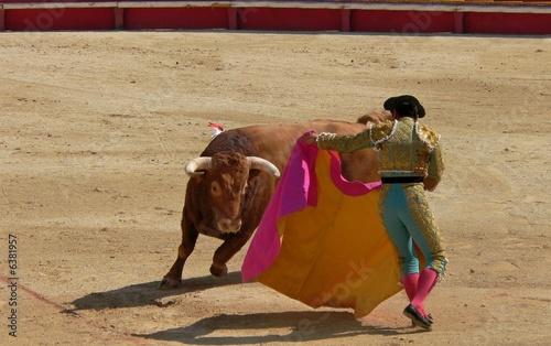 Staande foto Stierenvechten toro16