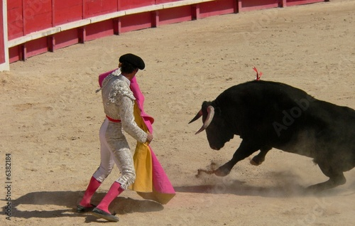 Staande foto Stierenvechten toro11