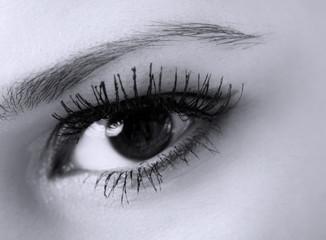 female eye with long eyelashes macro, black and white