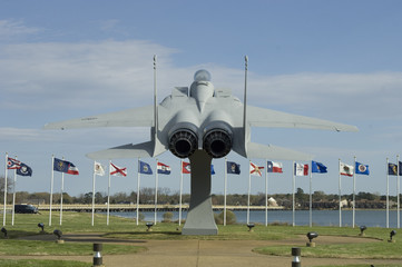 Fighter jet with Flags