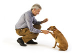 man is dog training obedience poster