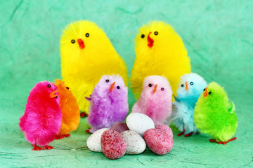 Family of easter chicks with eggs