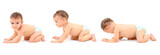Sequence of a baby crawling on white background . poster