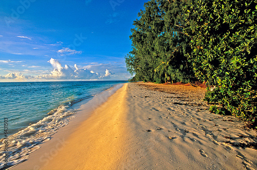 canvas print picture Une plage de la Digue (Seychelles)