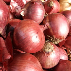 red onions in the sun
