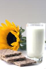 Sunflower Bran Flakes and Milk