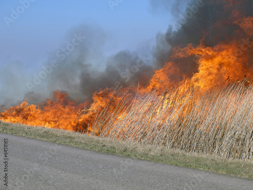 fire near road