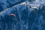 Couple of paragliders hovering. Swiss Alps poster