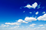 blue sky is covered by white fluffy clouds. poster