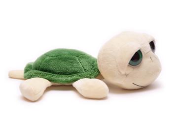 Plush turtle toy isolated on white background
