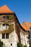 Red tiled roofs of Wawel castle, Krakow, Poland poster