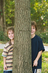 Boys Peeking Around a Tree