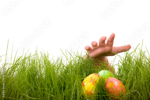 Easter egg hunt - 6489302