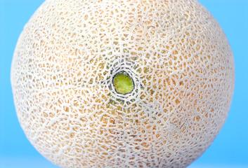Cantaloupe Abstract