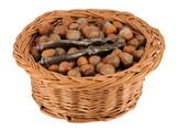 Basket of whole hazelnuts poster