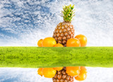 Pineapple and oranges on nature idyllic background poster