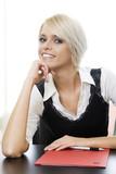 beautiful businesswomen poster