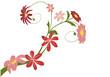 vecteur série - bouquet de fleurs sur un fond blanc