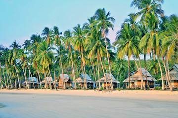 Bungalows in tropical paradise