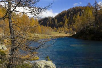 Lago di montagna in autunno