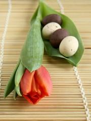 Tulip and eggs