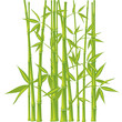 roleta: Bamboo,  illustration (mesh)