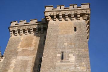 Tour du château de Villandry