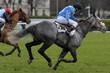 horse racing auteuil 07