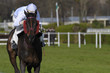 horse racing auteuil 05