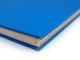 Blue Book Corner Detail Democrat Politics concept poster