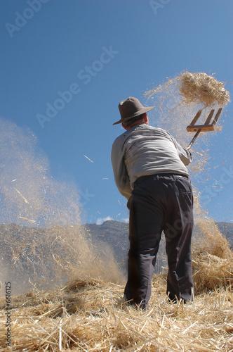 Agricultor con paja y trigo