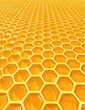roleta: honey cells texture
