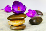 Small purple flowers and smooth river stones poster