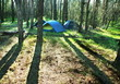 Tent in forest