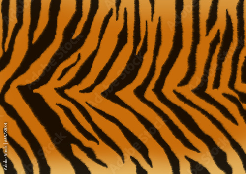 poster of Texture for a background - a fluffy skin of a tiger
