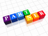 partner in colour poster