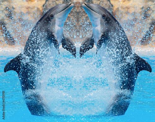Foto op Canvas Dolfijn Dolphins jumping