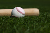 Baseball and Bat - 6745501