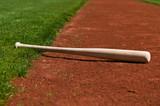 Baseball Bat - 6745772