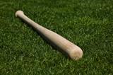 Baseball Bat - 6745967