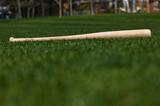Baseball Bat - 6745995