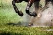 Fototapeten,pferd,kräfte,energie,reiter
