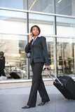 Business Travel Woman poster