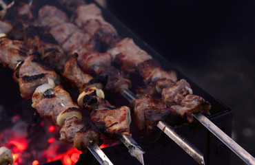 shish kebab on skewer