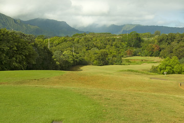 Fairway on a golf course