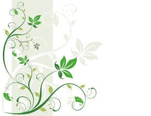 fondo hojas