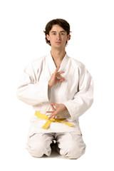 arts martiaux 29