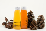 Shampoo With Pine Cones And Seeds In Pads poster