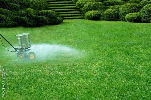 lawn care - 6822140