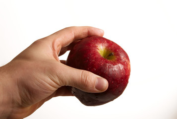 Hand holding apple on white background